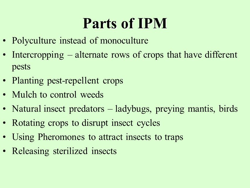 Parts of IPM Polyculture instead of monoculture