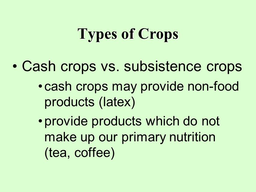 Types of Crops Cash crops vs. subsistence crops