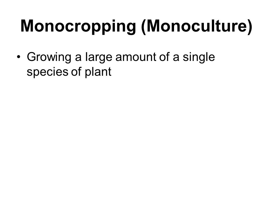 Monocropping (Monoculture)