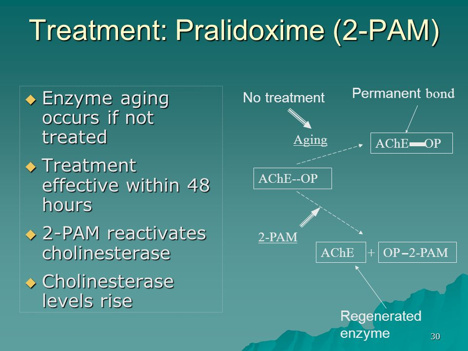 Treatment: Pralidoxime (2-PAM)