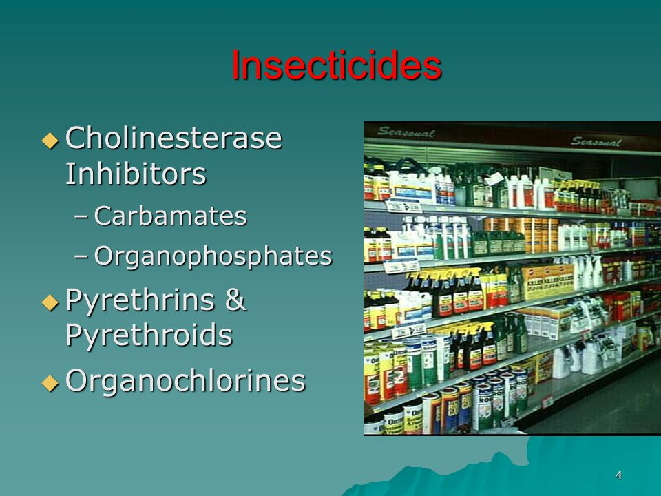 Insecticides Cholinesterase Inhibitors Pyrethrins & Pyrethroids