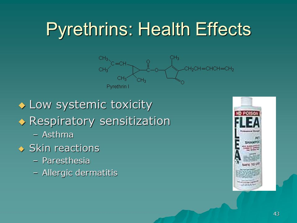 Pyrethrins: Health Effects