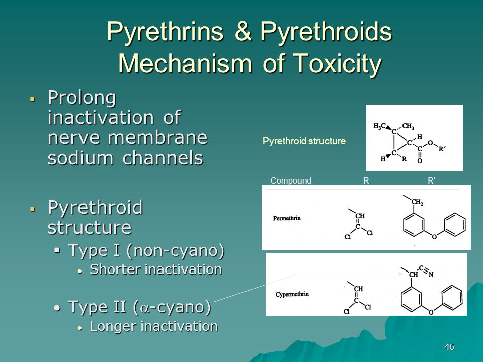 Pyrethrins & Pyrethroids Mechanism of Toxicity
