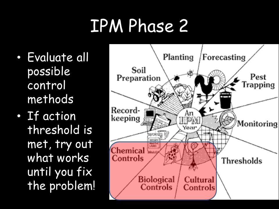 IPM Phase 2 Evaluate all possible control methods