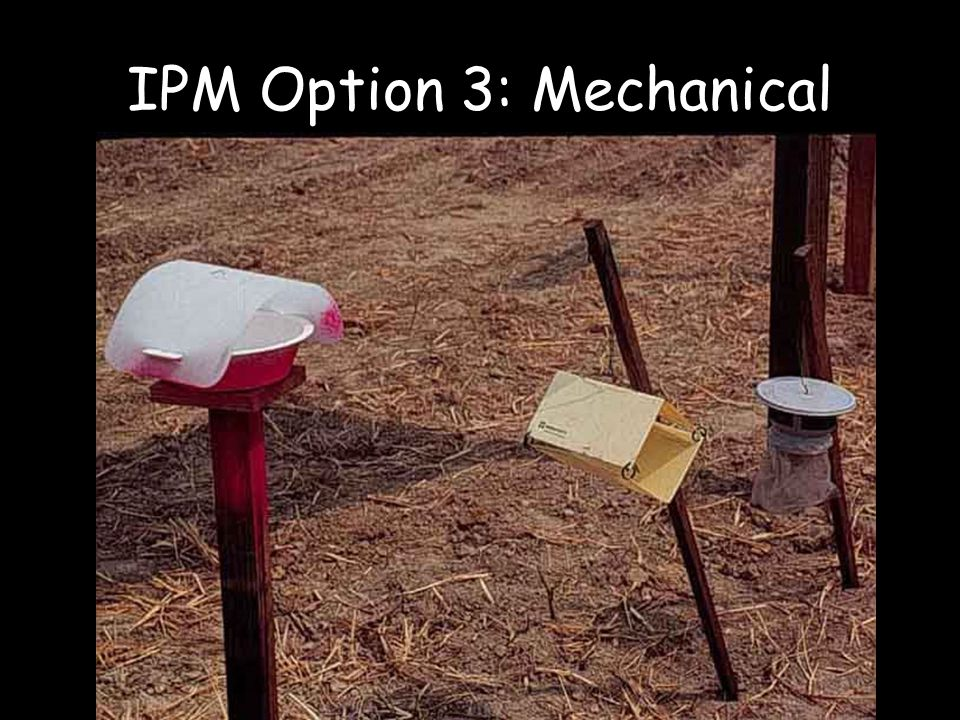 IPM Option 3: Mechanical