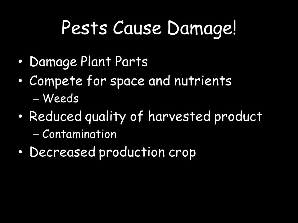 Pests Cause Damage! Damage Plant Parts Compete for space and nutrients