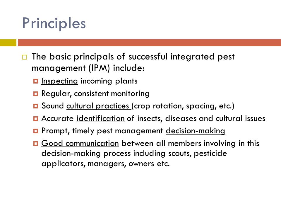 Principles The basic principals of successful integrated pest management (IPM) include: Inspecting incoming plants.