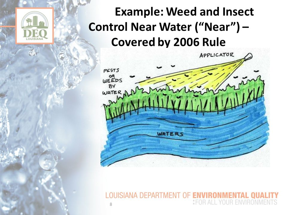Example: Weed and Insect Control Near Water ( Near ) – Covered by 2006 Rule