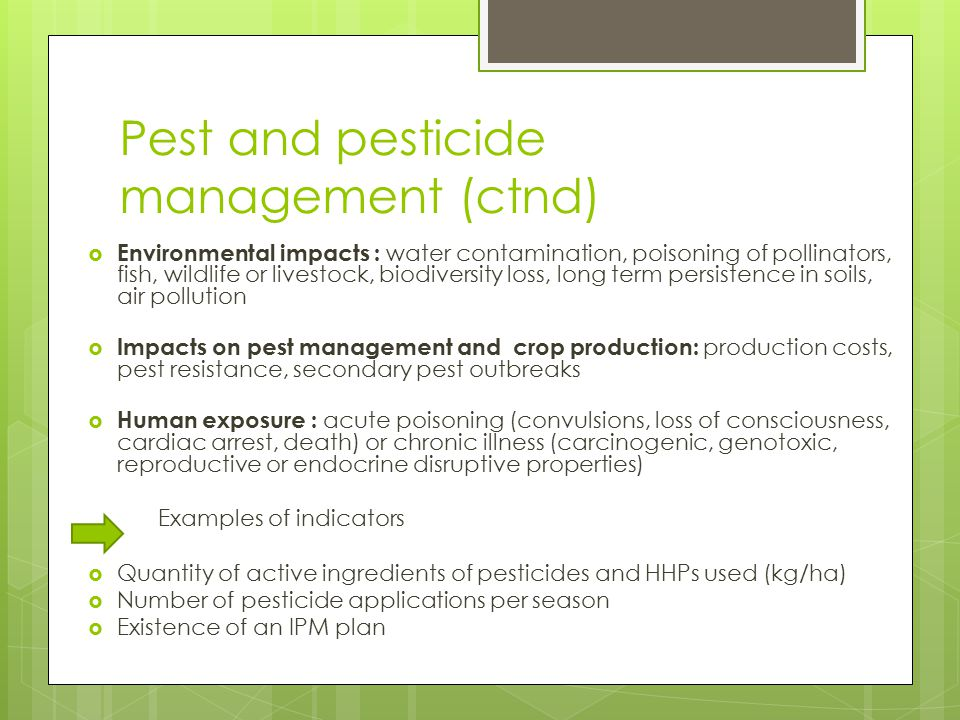Pest and pesticide management (ctnd)
