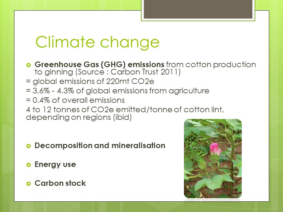 Climate change Greenhouse Gas (GHG) emissions from cotton production to ginning (Source : Carbon Trust 2011)