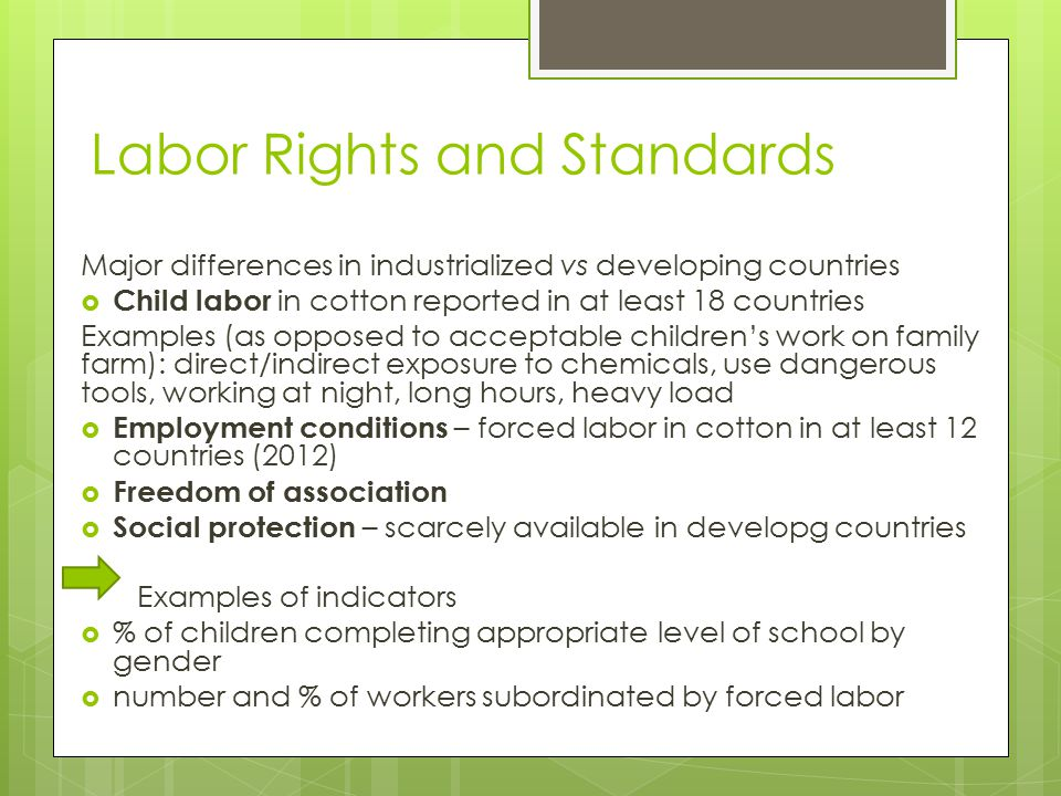 Labor Rights and Standards