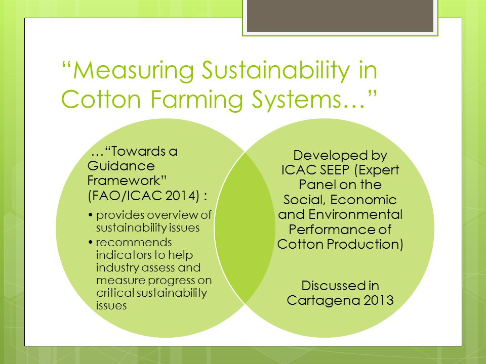 Measuring Sustainability in Cotton Farming Systems…