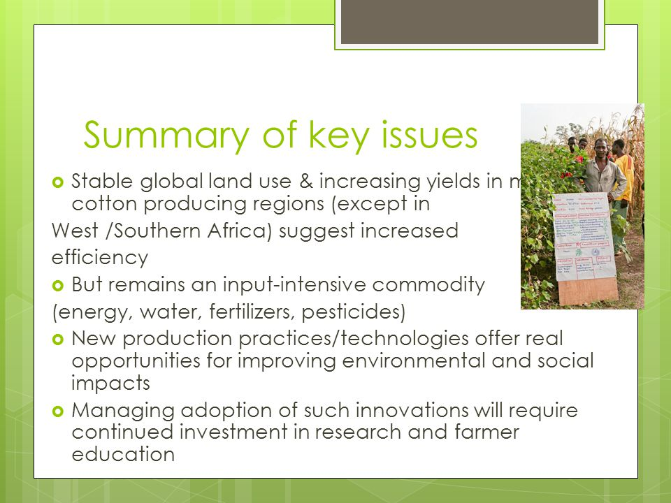 Summary of key issues Stable global land use & increasing yields in major cotton producing regions (except in.