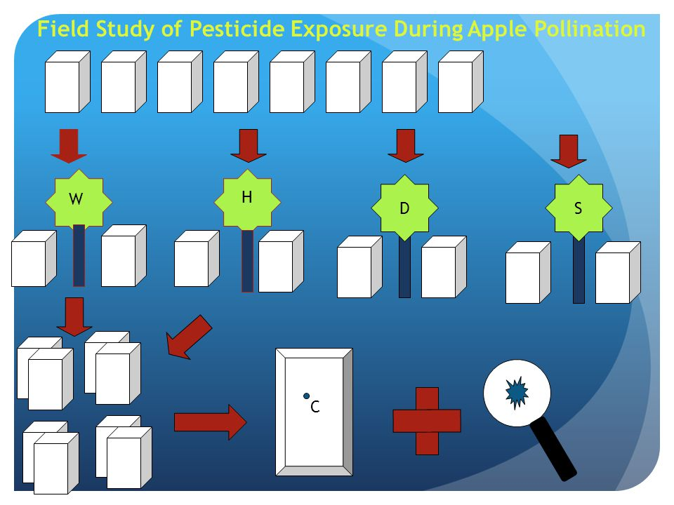 Field Study of Pesticide Exposure During Apple Pollination