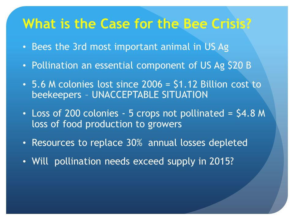 What is the Case for the Bee Crisis
