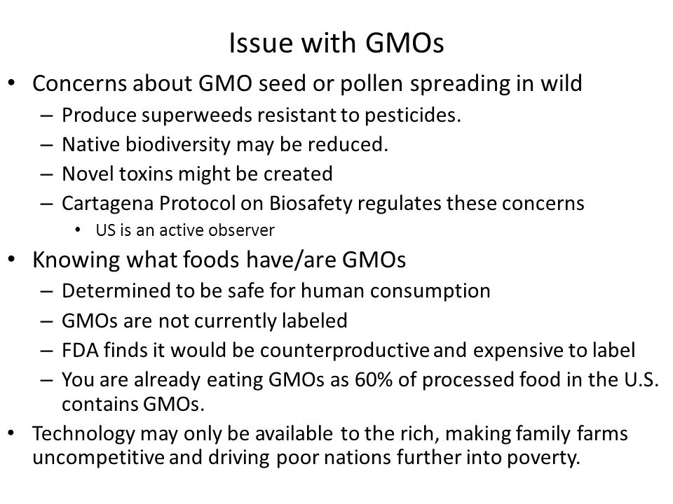 Issue with GMOs Concerns about GMO seed or pollen spreading in wild