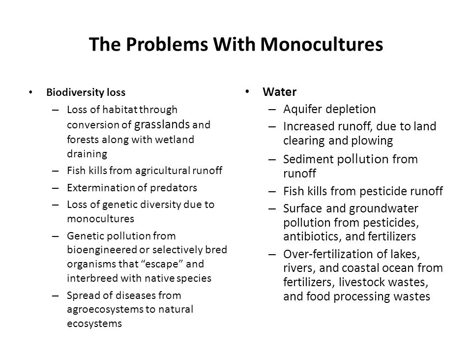 The Problems With Monocultures