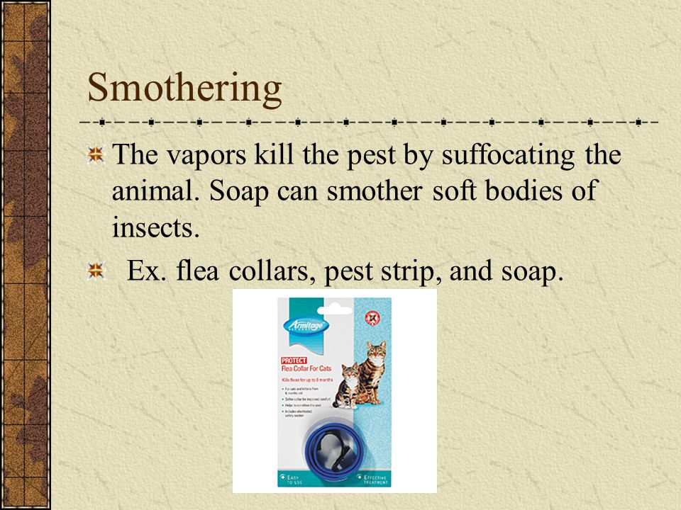 Smothering The vapors kill the pest by suffocating the animal. Soap can smother soft bodies of insects.