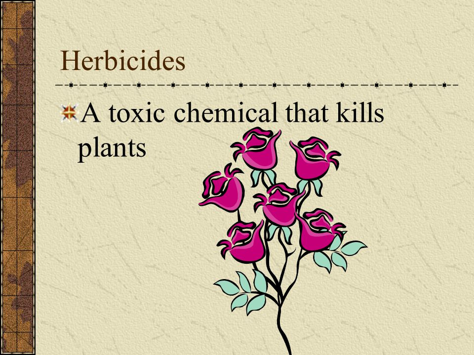 Herbicides A toxic chemical that kills plants