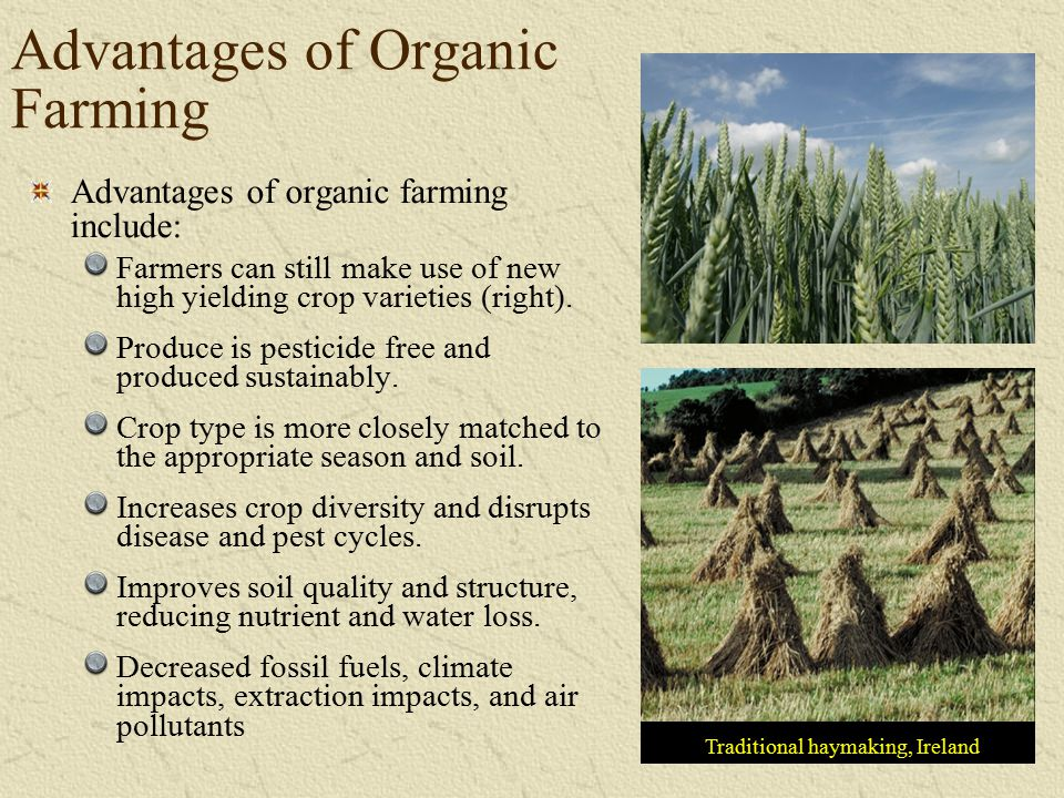 Advantages of Organic Farming
