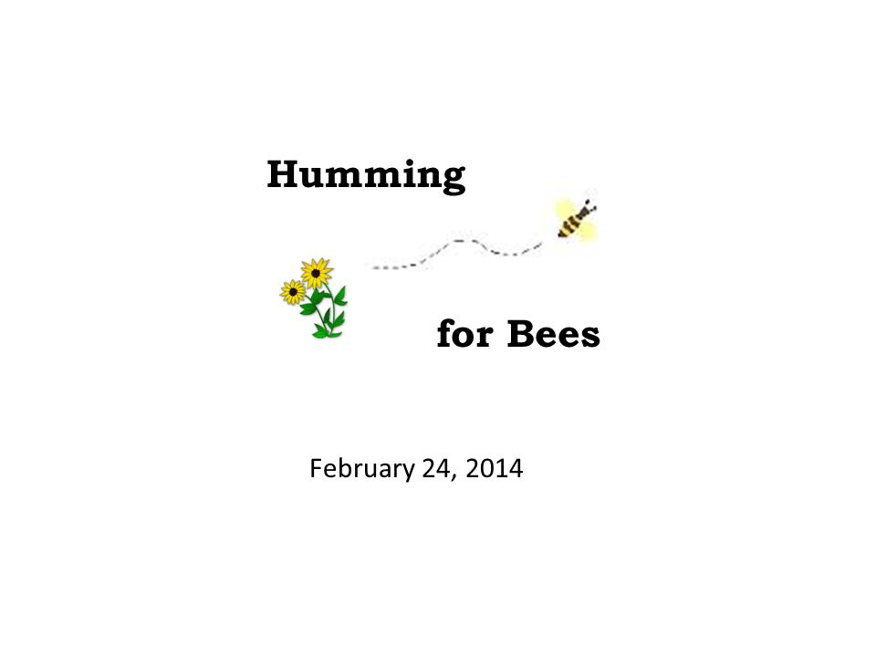 Humming for Bees February 24, 2014