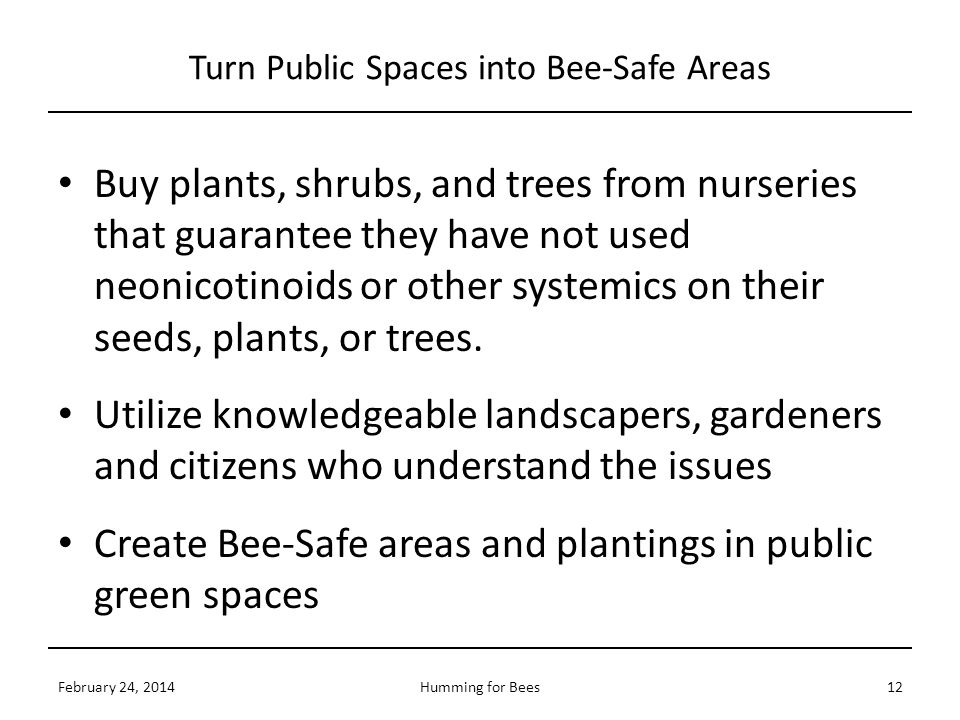 Turn Public Spaces into Bee-Safe Areas