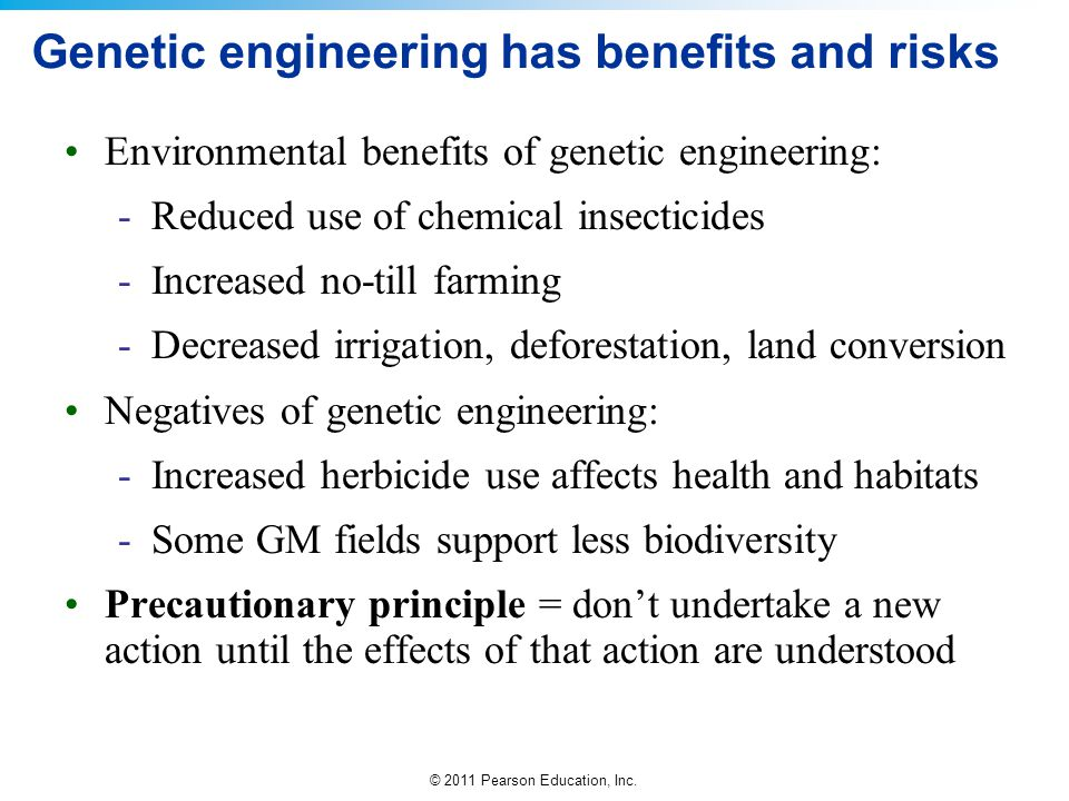 ethical dangers of genetic engineering Risk and the need for humility and prudence in genetic developments  the  technology, like genetics engineering, the more important this is.