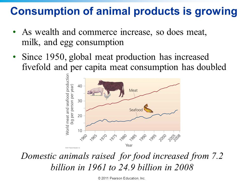 Consumption of animal products is growing