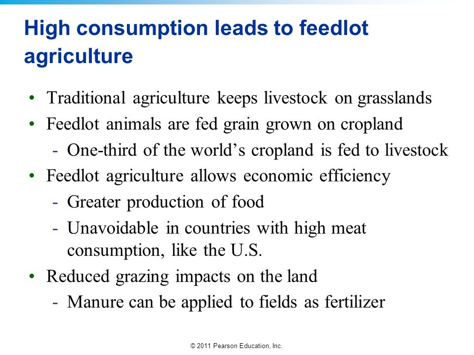 High consumption leads to feedlot agriculture