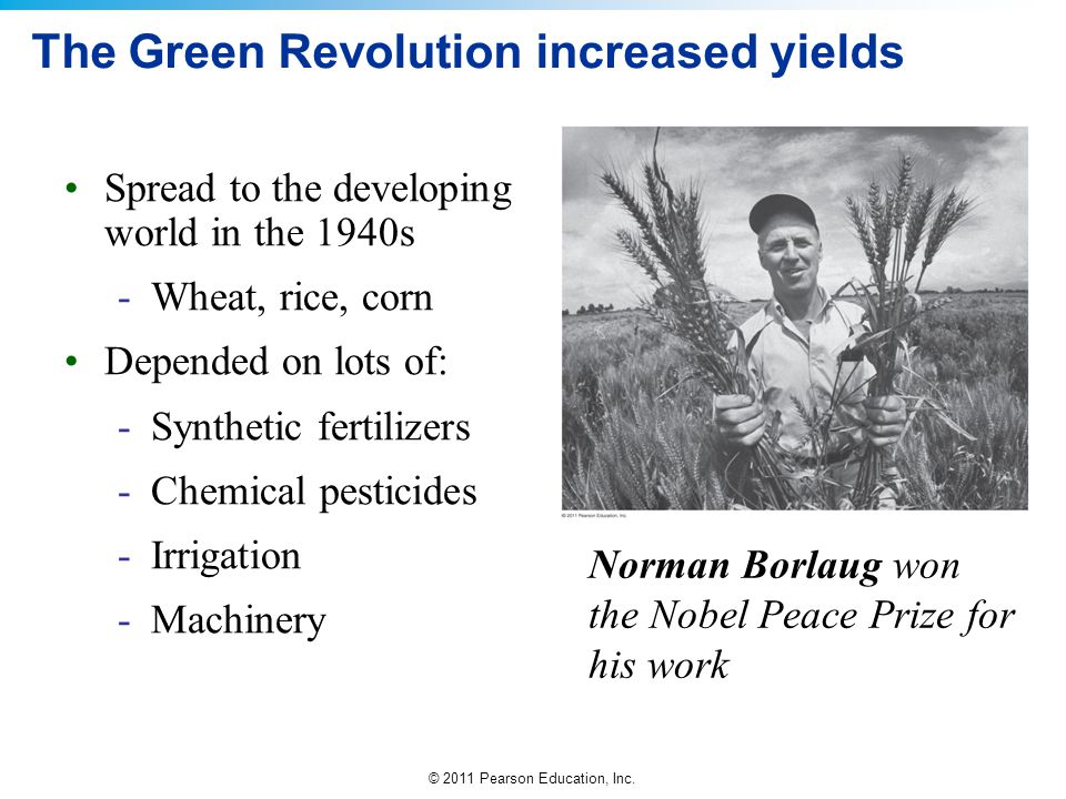 The Green Revolution increased yields