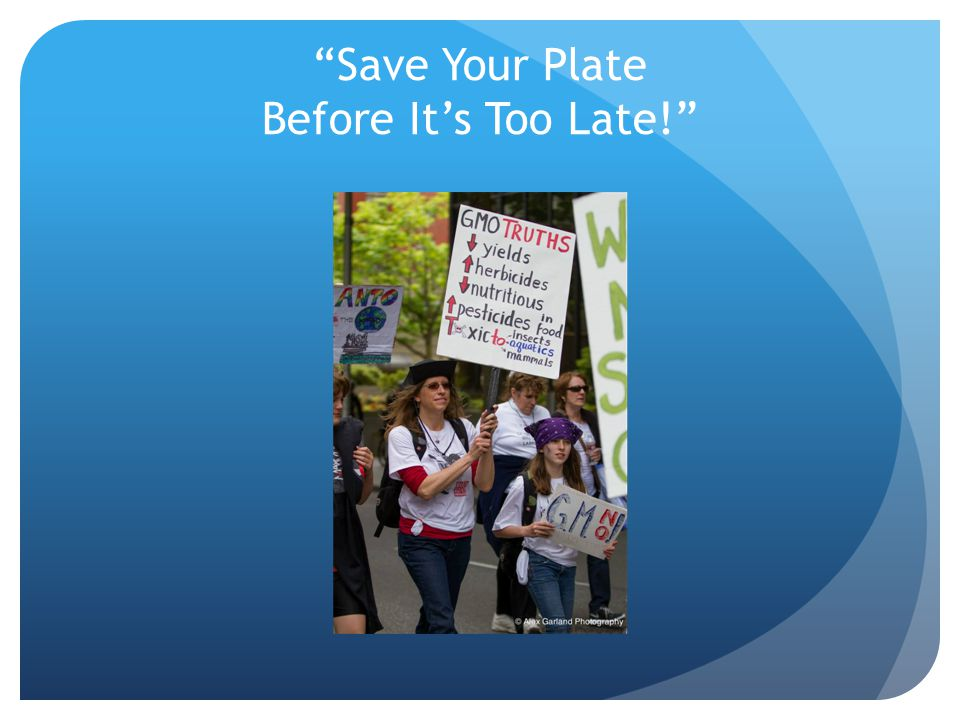 Save Your Plate Before It's Too Late!