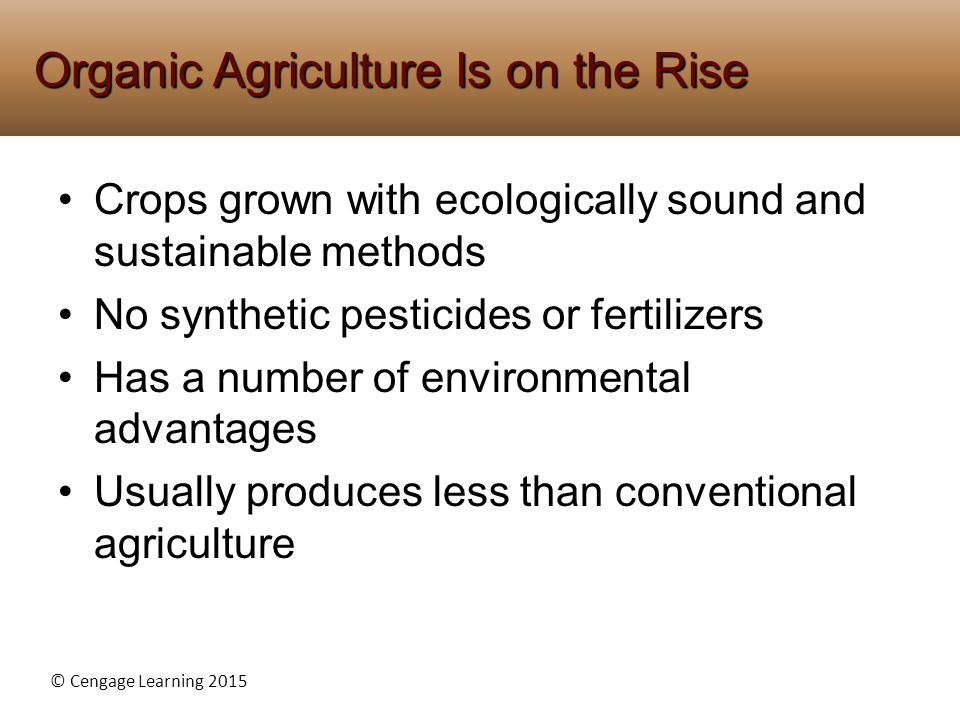 Organic Agriculture Is on the Rise