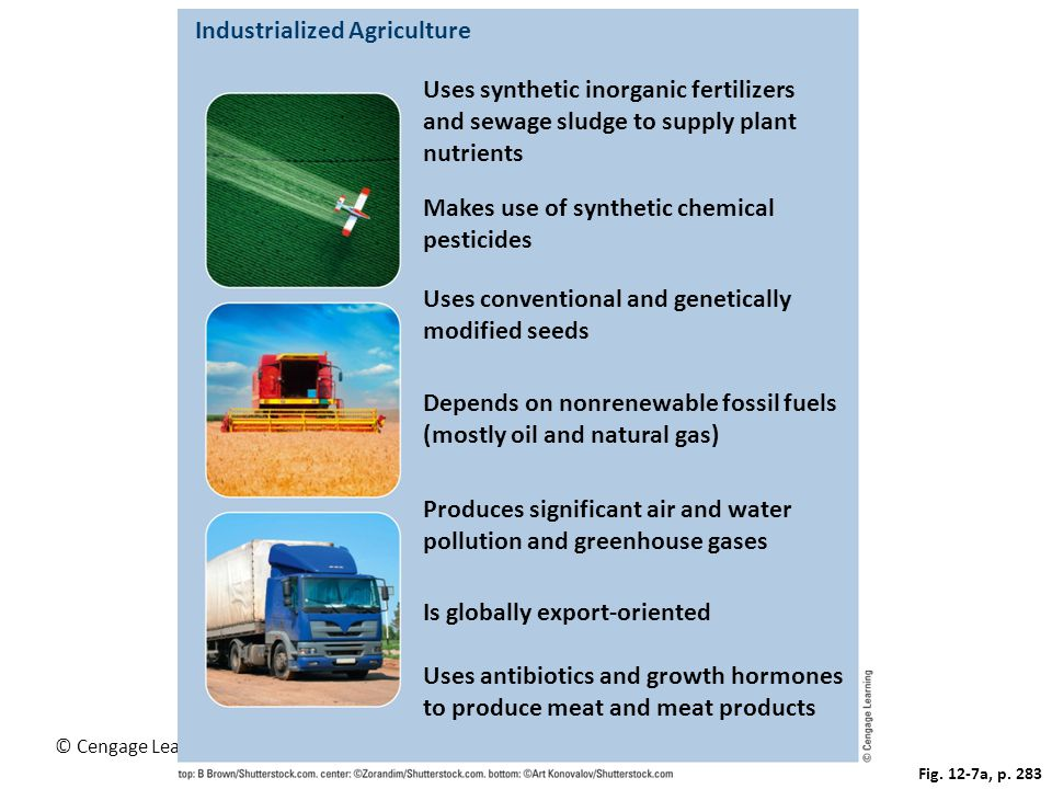 Industrialized Agriculture