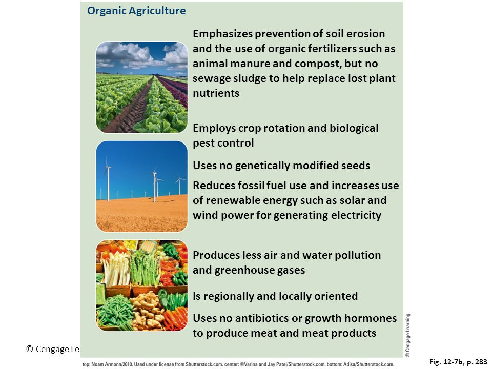 Employs crop rotation and biological pest control