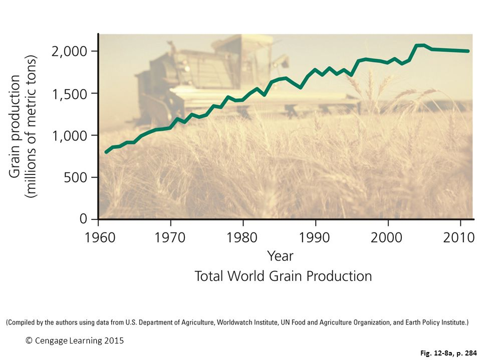 Figure 12.8 These graphs show the growth in worldwide grain production (left) of wheat, corn, and rice, and per capita grain production (right) between 1961 and 2011. Question: Why do you think grain production per capita has grown less consistently than total grain production