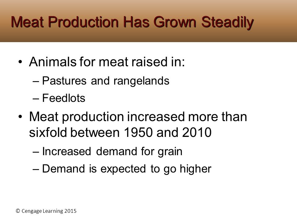 Meat Production Has Grown Steadily