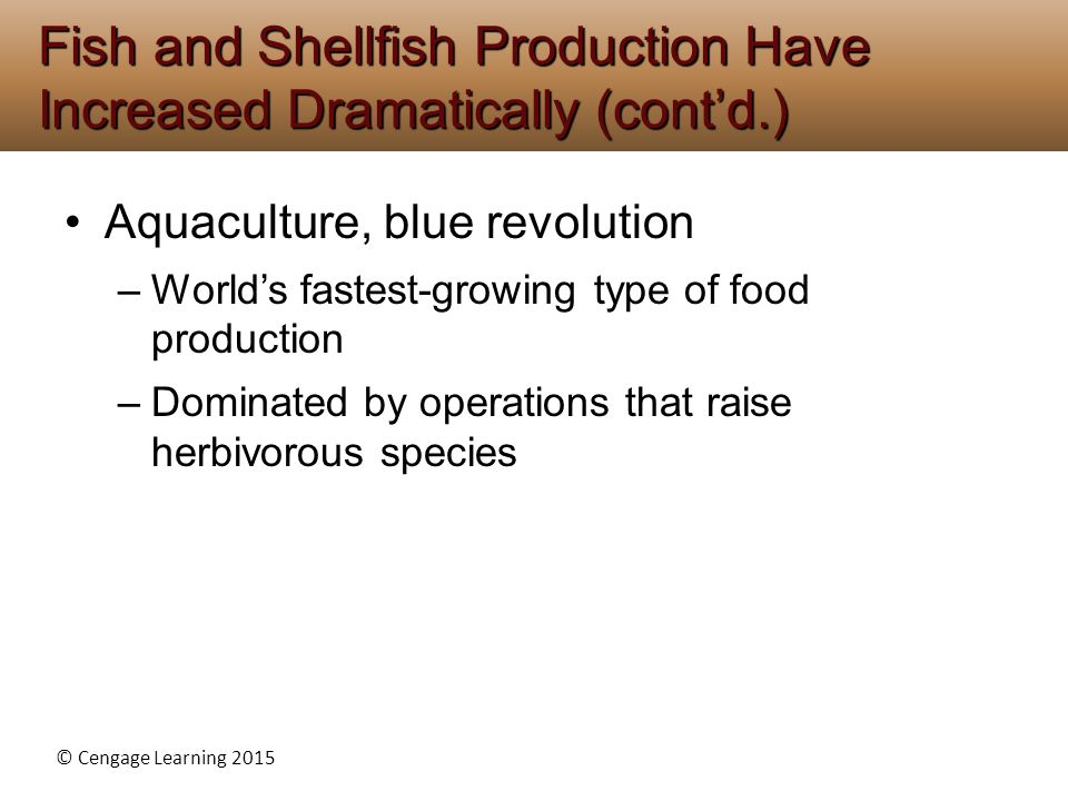Fish and Shellfish Production Have Increased Dramatically (cont'd.)