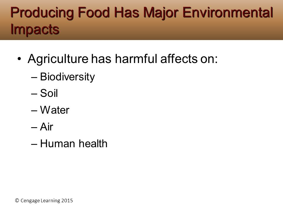 Producing Food Has Major Environmental Impacts