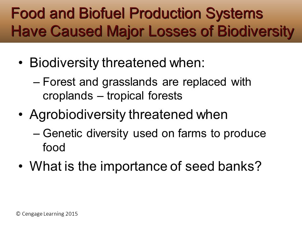 Food and Biofuel Production Systems Have Caused Major Losses of Biodiversity