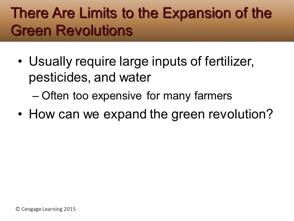There Are Limits to the Expansion of the Green Revolutions