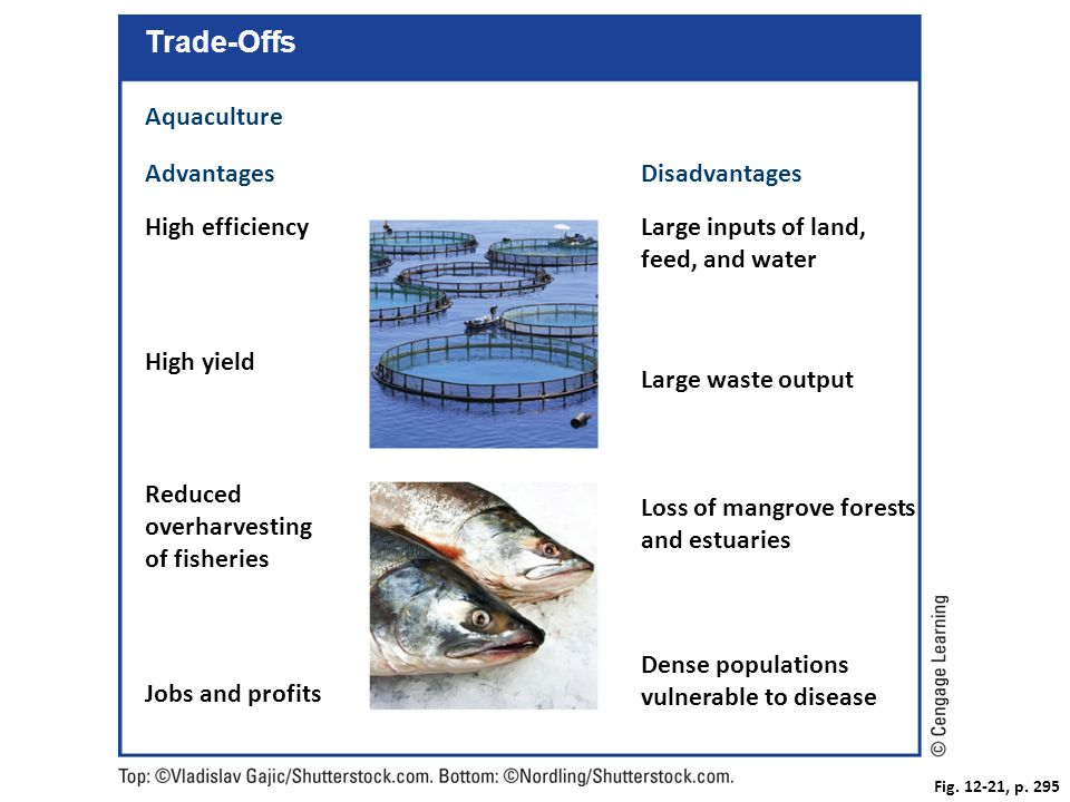 Trade-Offs Aquaculture Advantages Disadvantages High efficiency