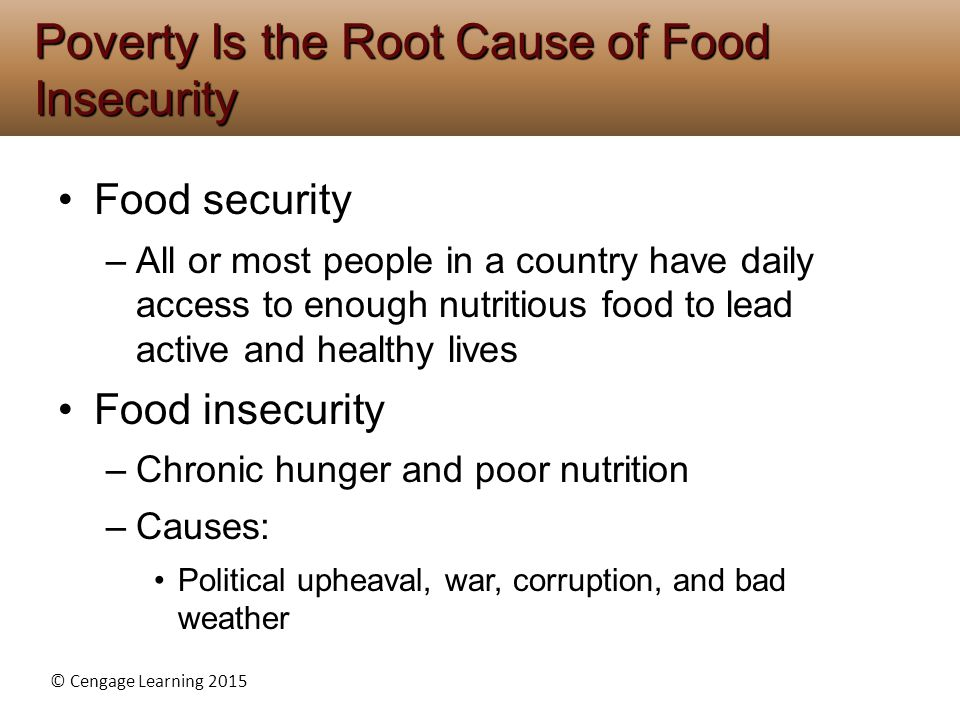 Poverty Is the Root Cause of Food Insecurity
