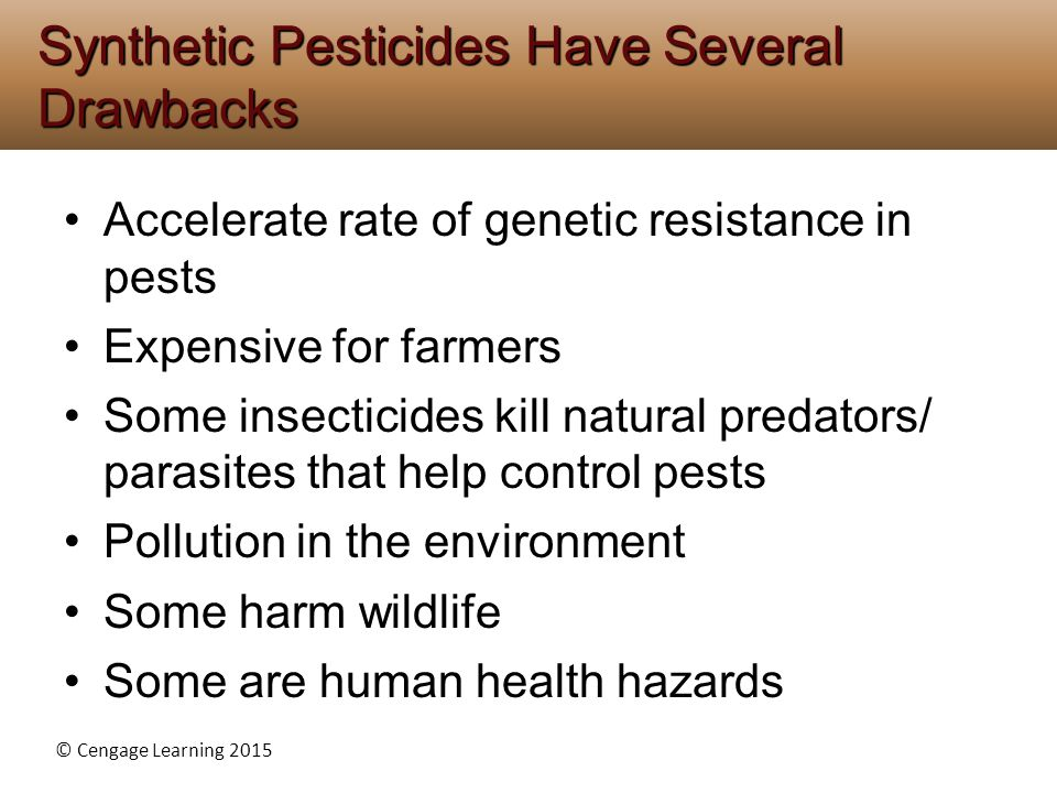 Synthetic Pesticides Have Several Drawbacks