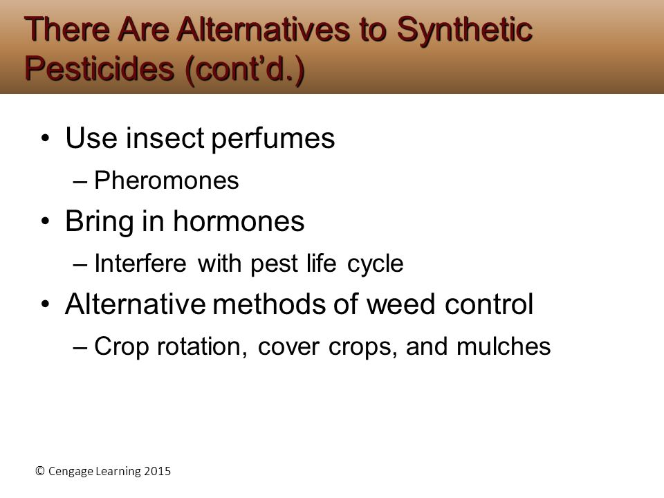 There Are Alternatives to Synthetic Pesticides (cont'd.)