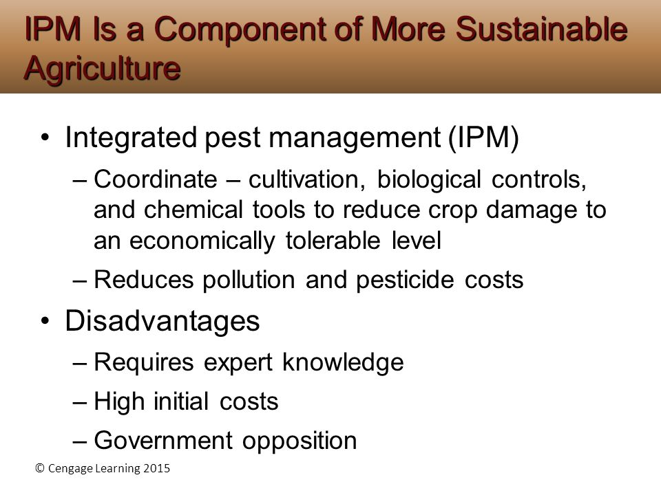 IPM Is a Component of More Sustainable Agriculture