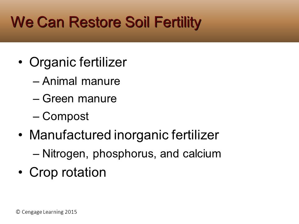 We Can Restore Soil Fertility