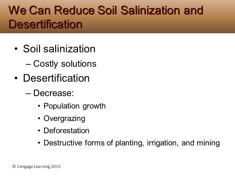 We Can Reduce Soil Salinization and Desertification