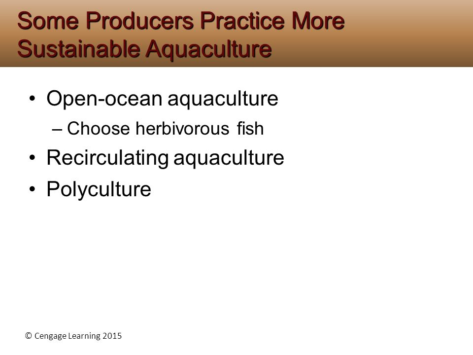 Some Producers Practice More Sustainable Aquaculture