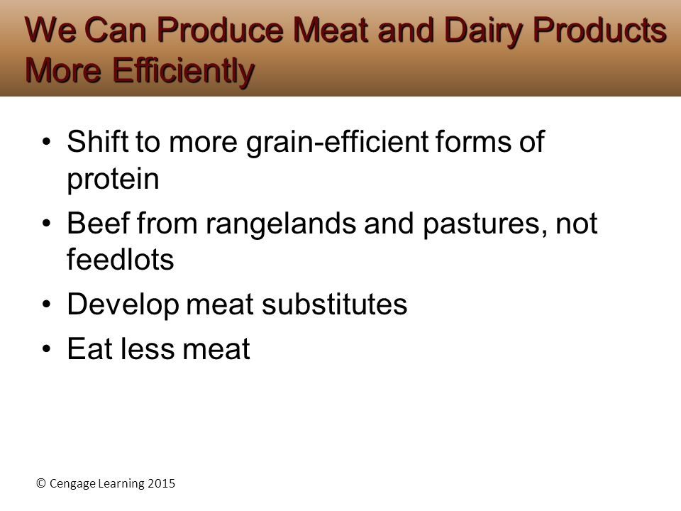 We Can Produce Meat and Dairy Products More Efficiently