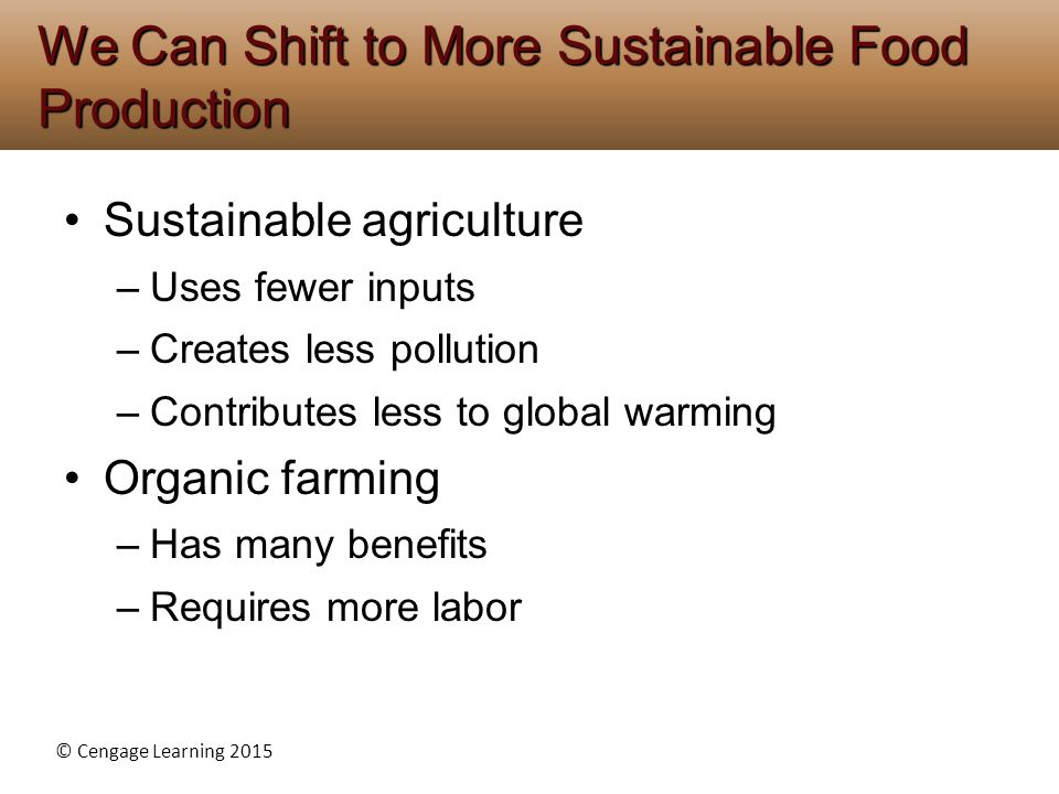 We Can Shift to More Sustainable Food Production